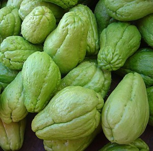 Image of Chayote or Sayote Production