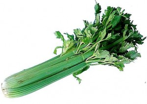 Image of Celery or Kinchay Production
