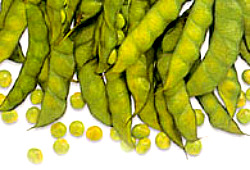 Image of Pigeon Pea or Kadios Production
