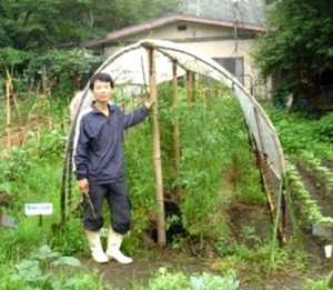 How To Make Low Cost Bamboo Greenhouse Franchise